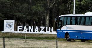 201703-FANAZUL