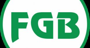 Federación Gráfica Logo