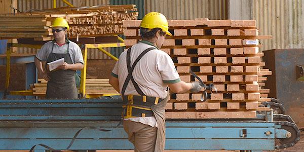 Manual-Buenas-Prácticas-Industria-Maderera-07