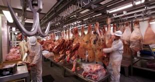 trabajadores-de-la-carne